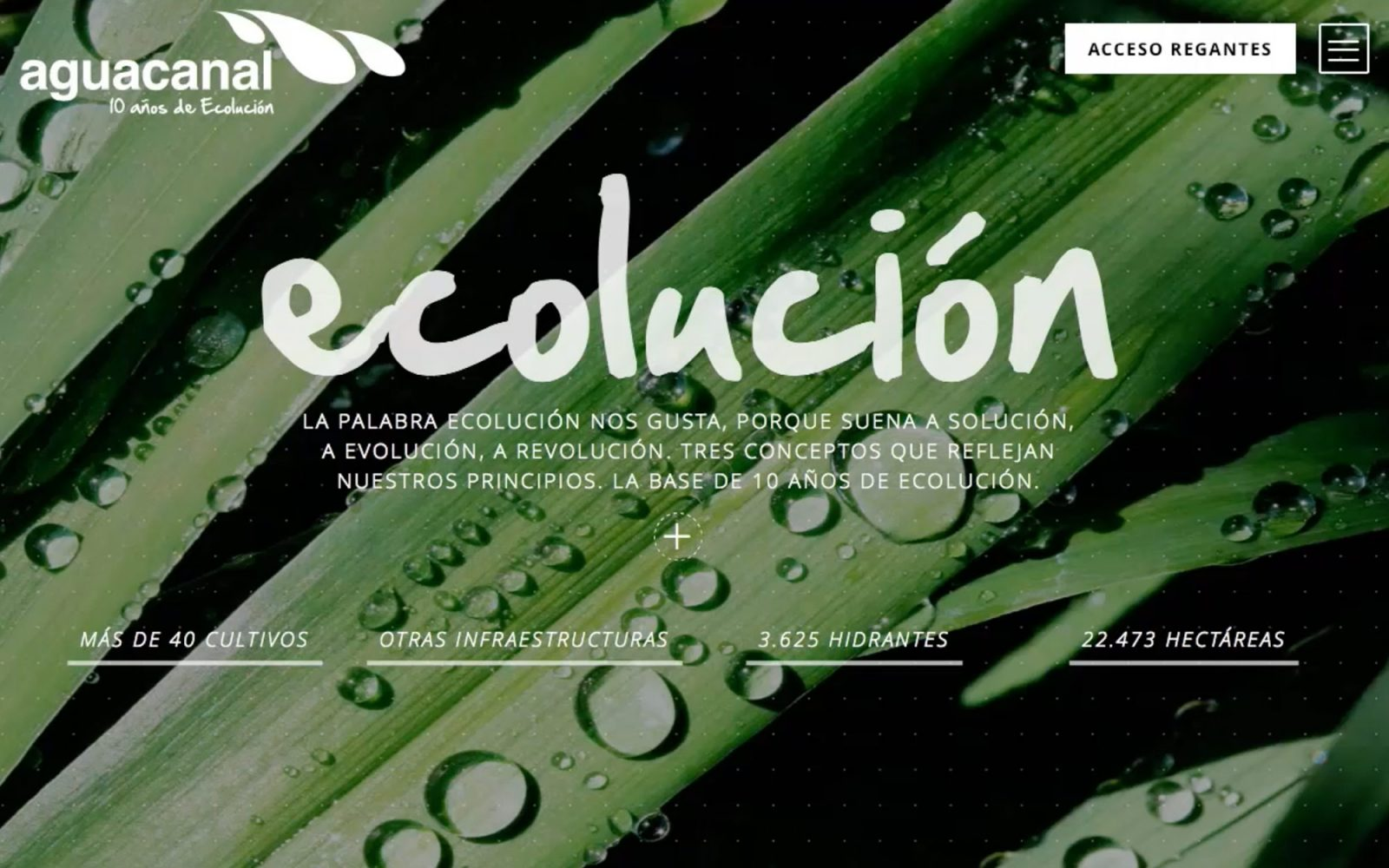 Web para Aguacanal