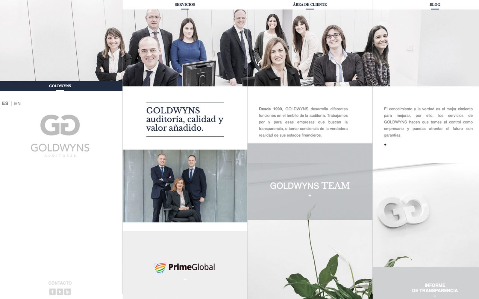 Web corporativa para Goldwyns